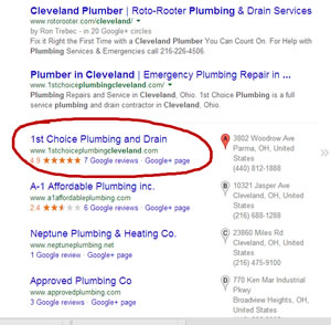 local search ranking specialists