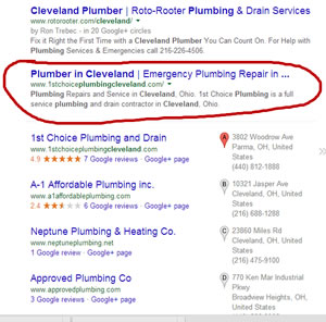 Organic Search Ranking Specialist